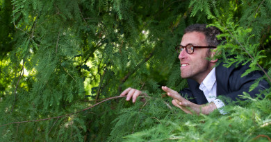 mad scientist outdoor concept - weird businessman or botanist hiding in green lush pine leaves and trees for corporate burnout or phobia,natural summer daylight
